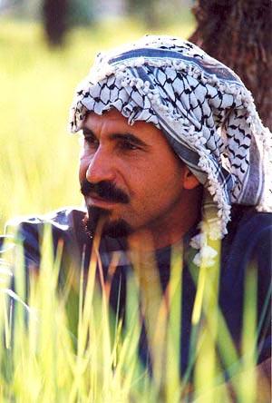 حمید فرخ نژاد در نمایی از فیلم